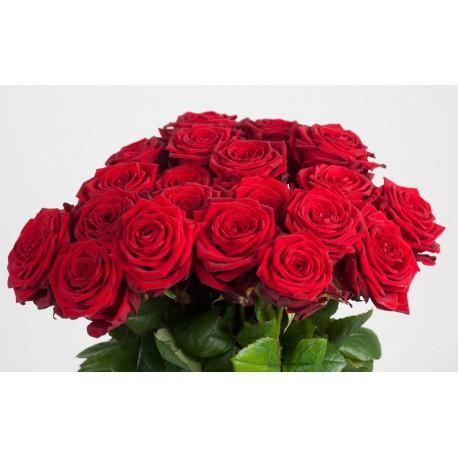 Composez votre bouquet de roses rouges